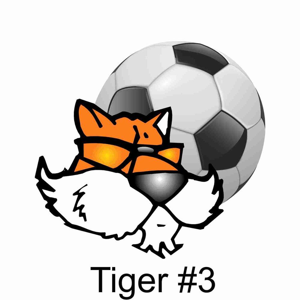 Tiger #3.jpg