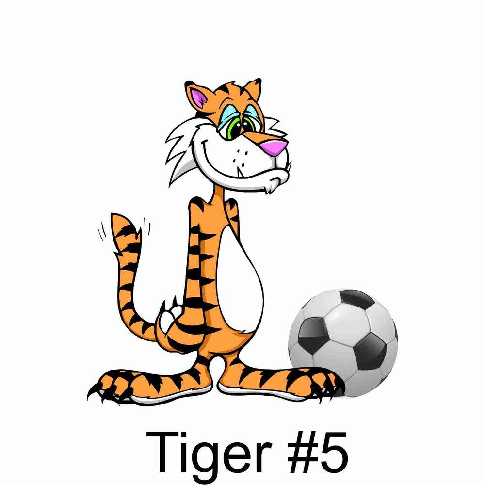 Tiger #5.jpg