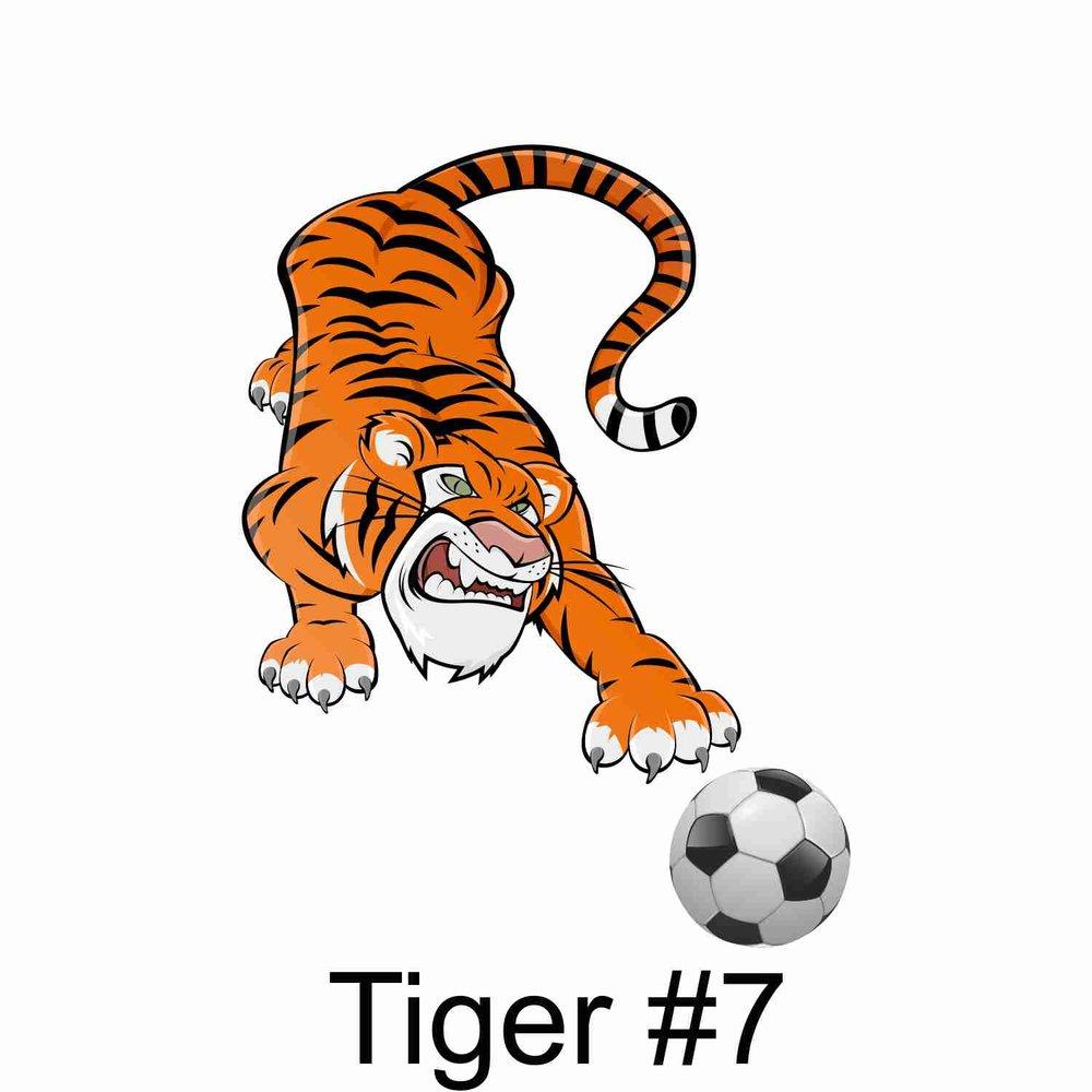 Tiger #7.jpg