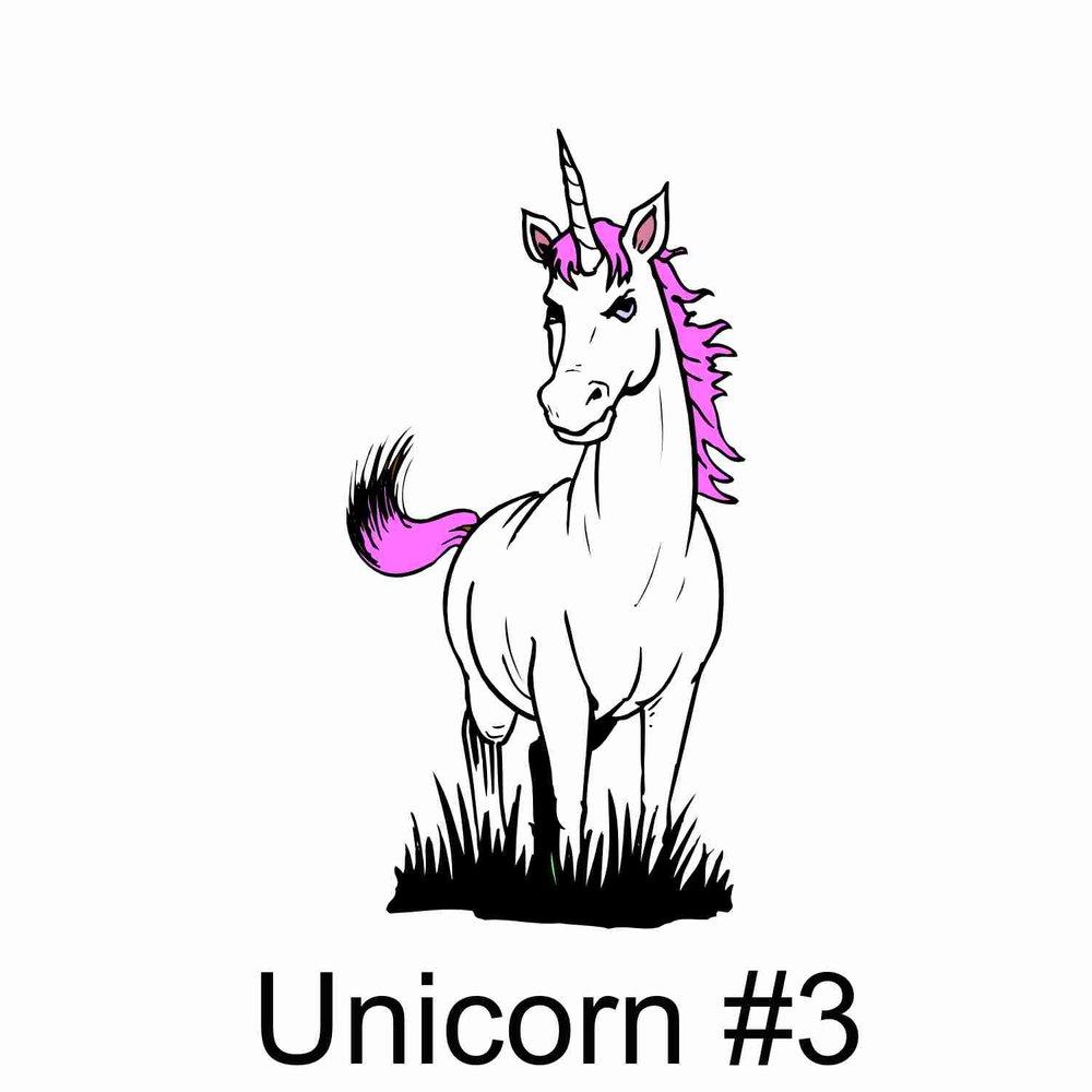 Unicorn #3.jpg