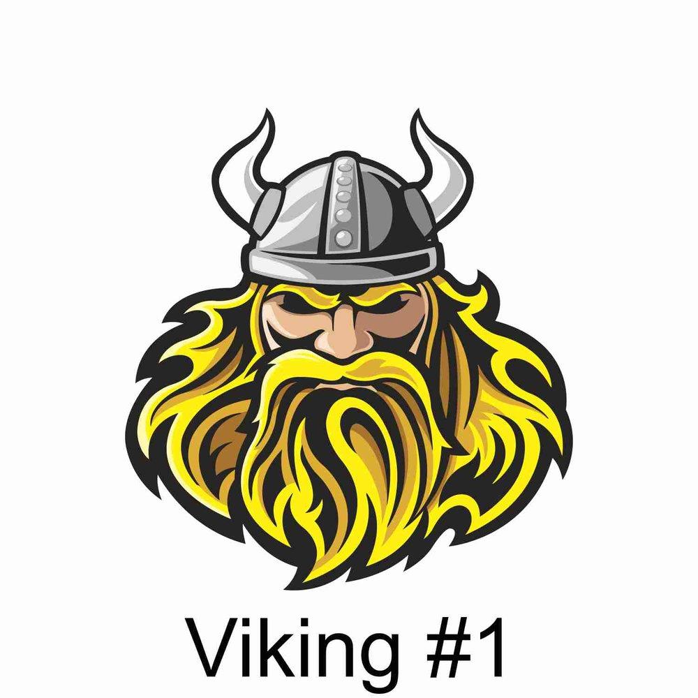 Viking #1.jpg
