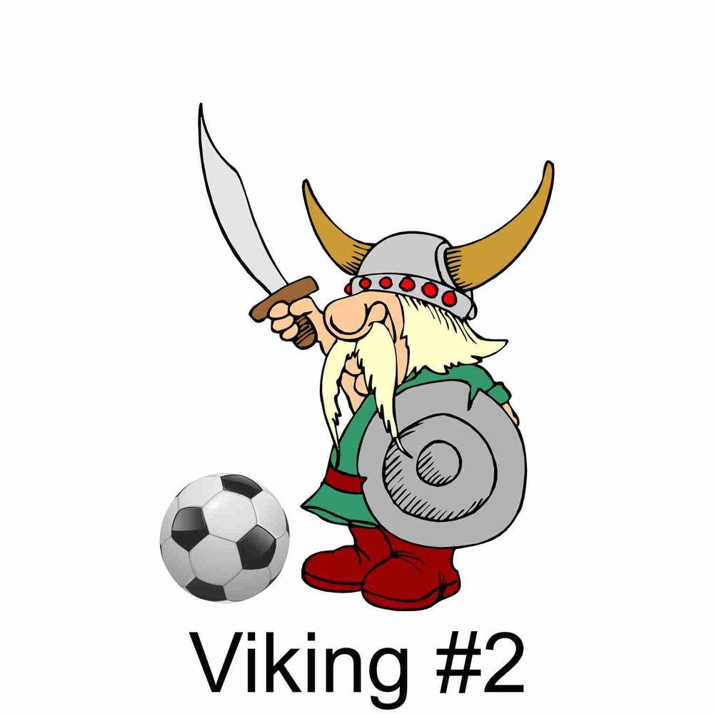 Viking #2.jpg