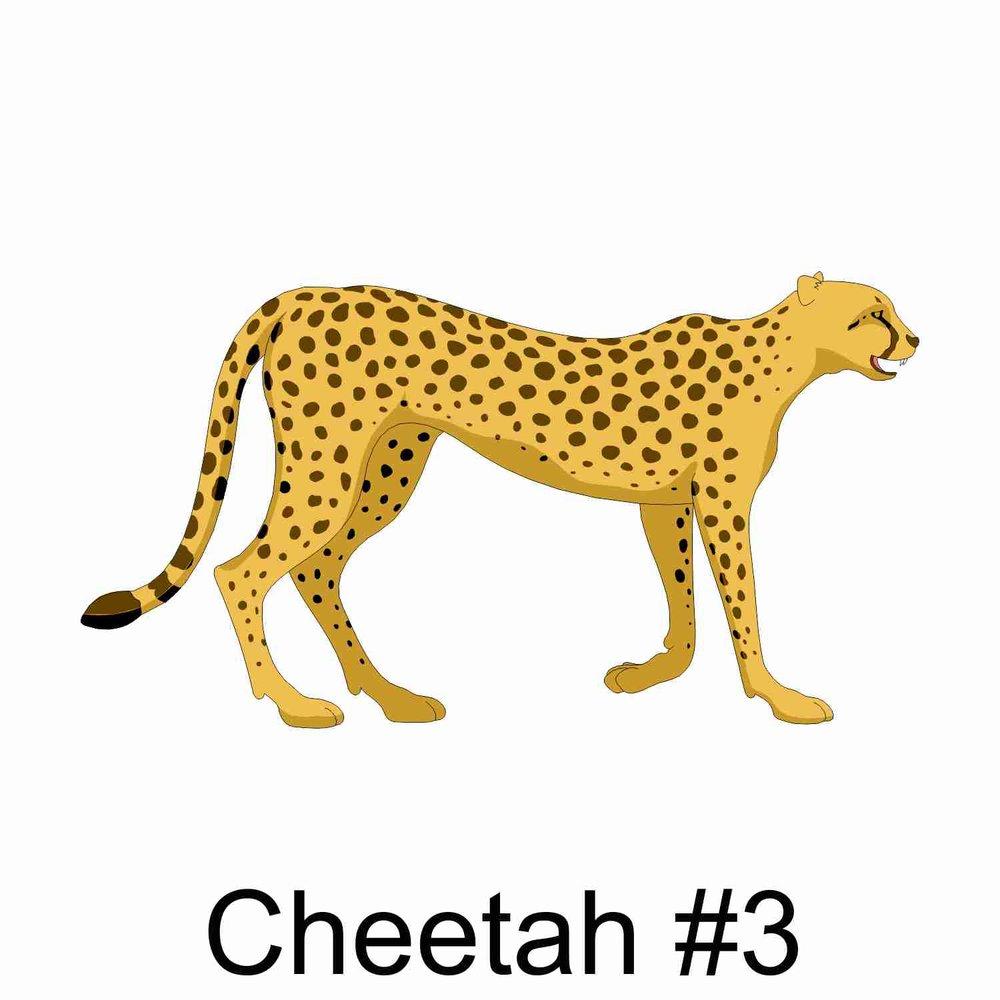 Cheetah #3.jpg