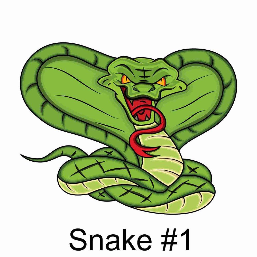 Snake #1.jpg
