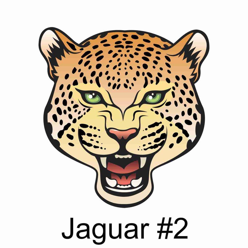 Jaguar #2.jpg