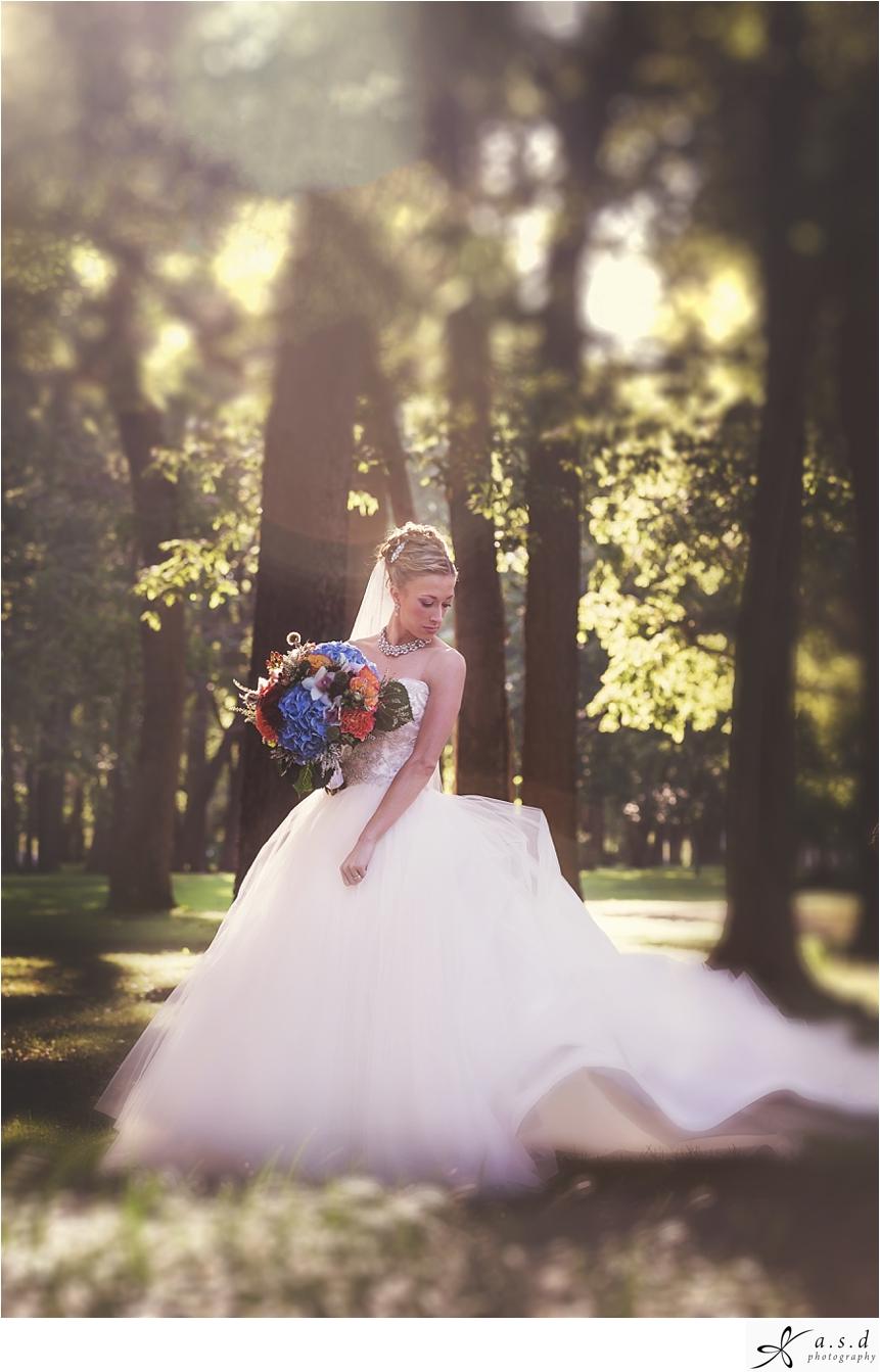 Bokeh Bride chicago illinois photographer