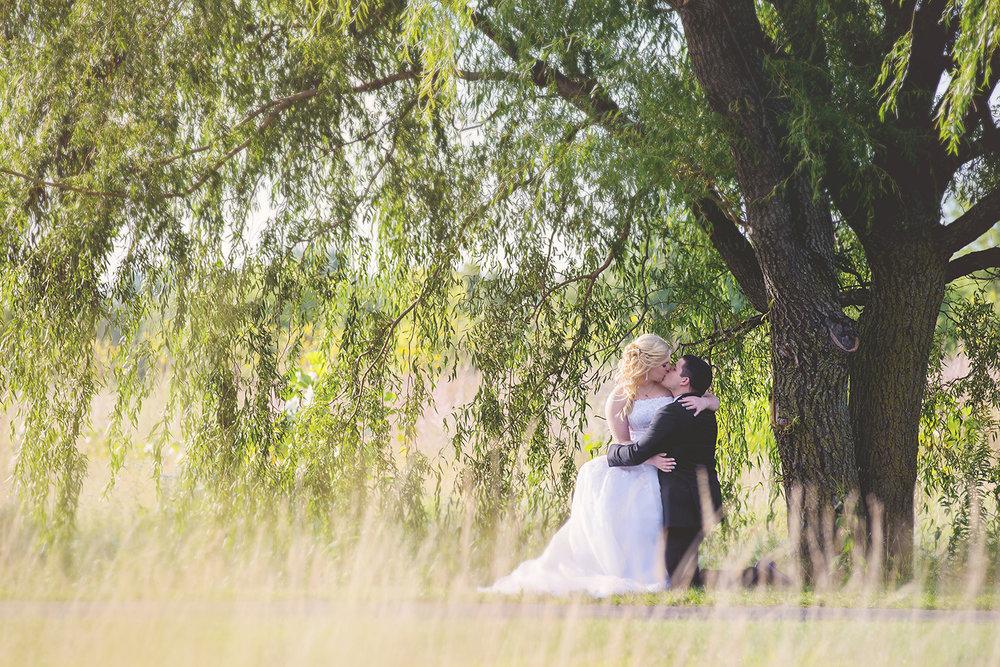 willow_tree_bride_groom.jpg