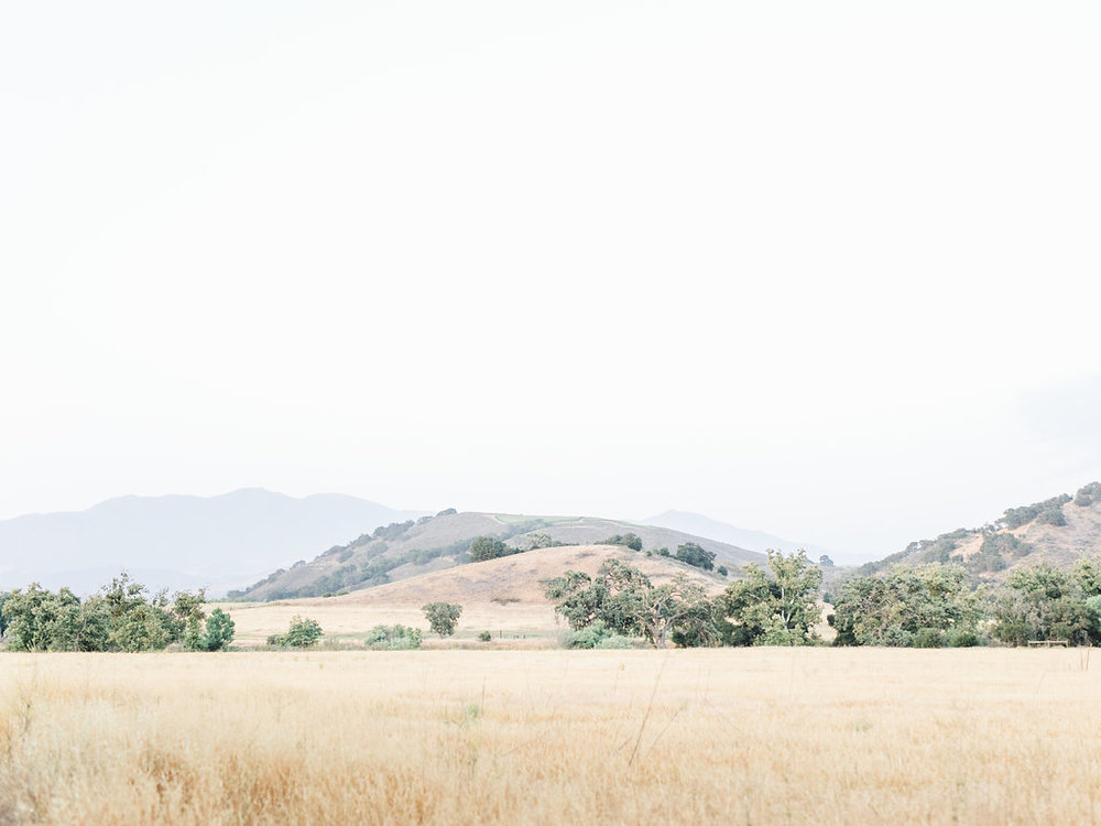 alegria-by-design-wedding-planner-planning-event-design-santa-barbara-day-of-coordinator-kestrel-park-santa-ynez-fields-castle-lavender-garden-mrs-box (2).jpg