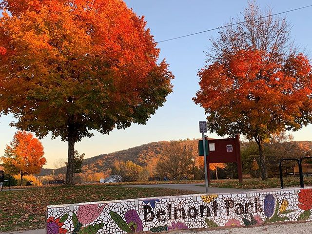 Less than one week until the Belmont Bash!  Fall festivals are so very hygge.  #fall #festival #belmontbashcville #foliage #cville #music #hygge