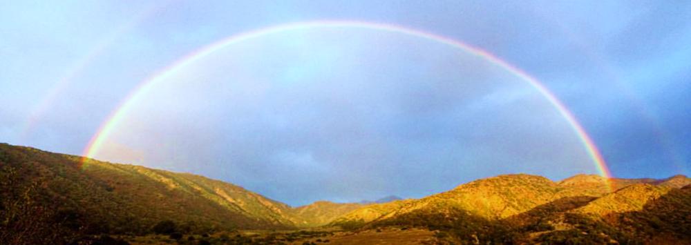 Santa Cruz Island, 2015.Photo credit: Danielle Aube