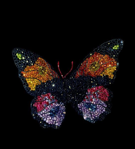 jar butterfly.jpg