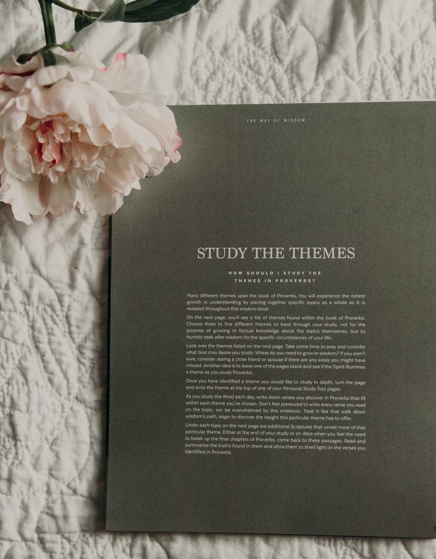 Study-40.jpg