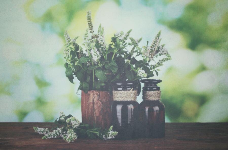 Candice Sardella Organic Herbs