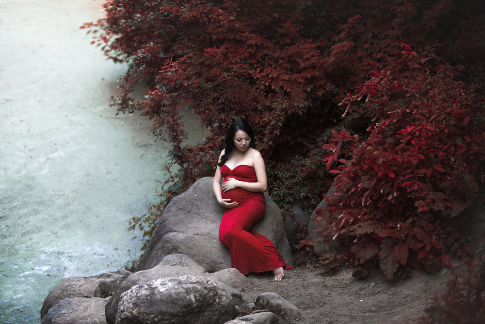 NYC Meternity Photographer Boris Zaretsky Prospect Park Maternity Photoshoot _B2C6406-Edit-Edit copy.jpg