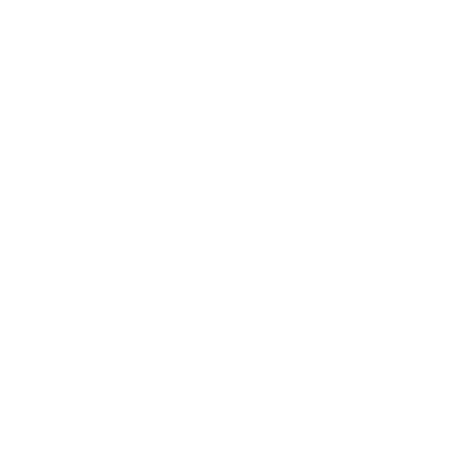 Ray Photography Co.