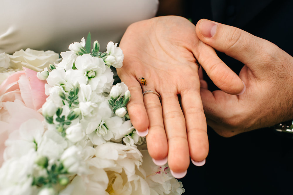 AlexaNahasPhoto_Renee_Joe_Wedding_1746.jpg