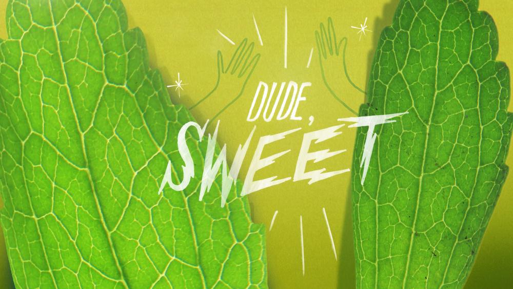 sweet_01.jpg