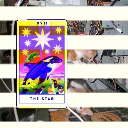 star card.jpg