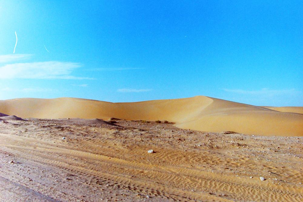 dirt road & dunes.jpg
