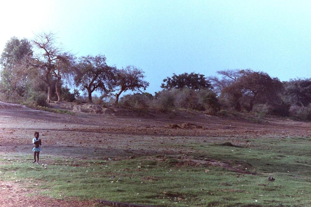 Mali land