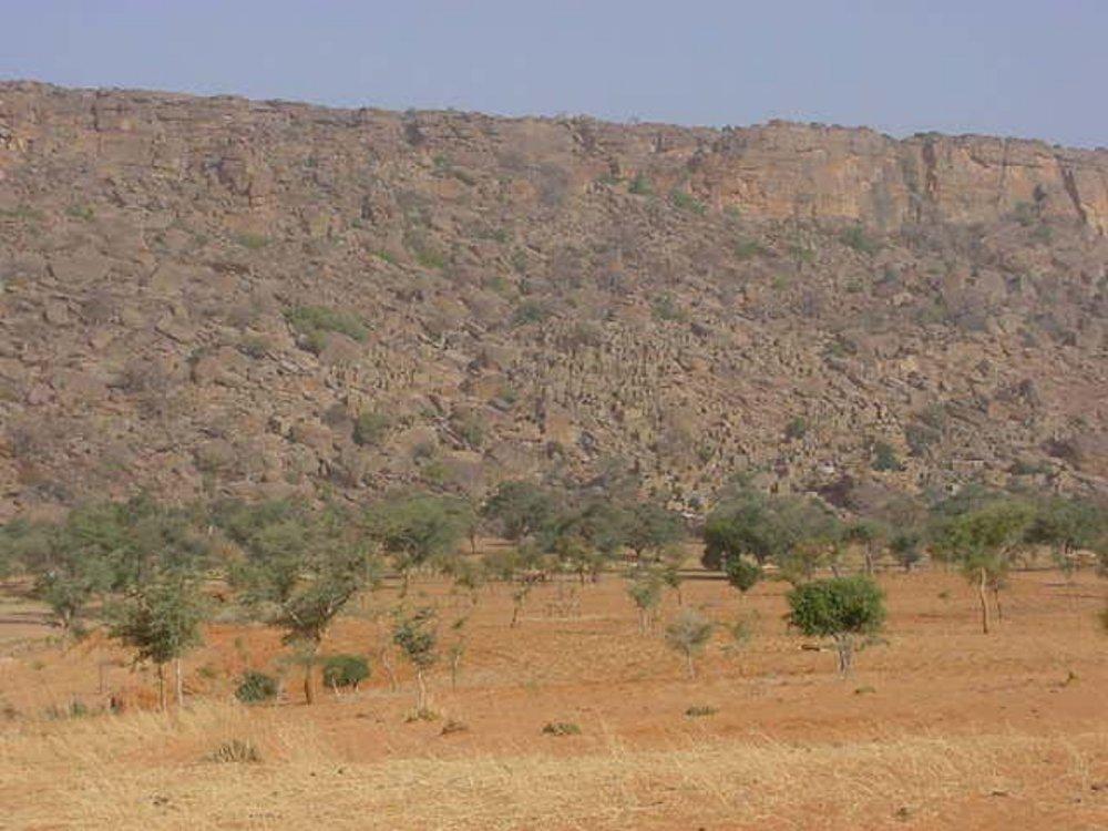 Central Mali landscape