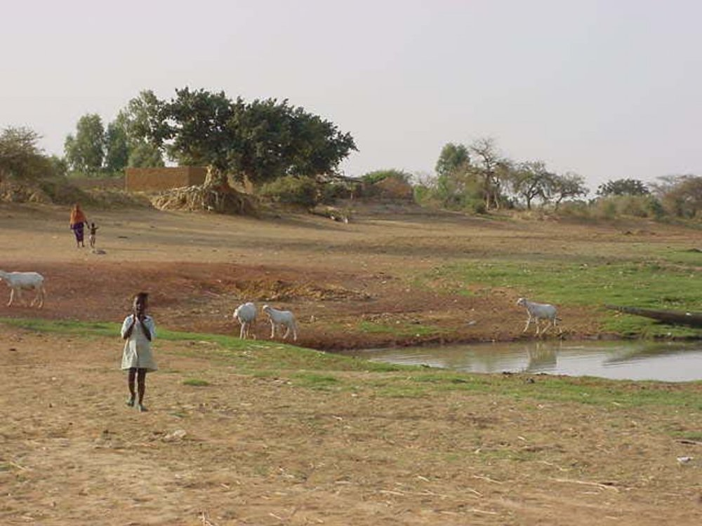 The scene just outside of Djenne Mali