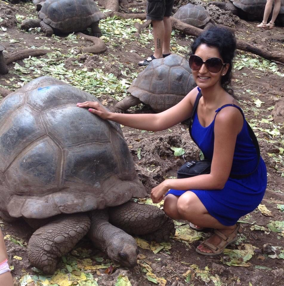 ask-a-traveler-preeti-pandya-giant-turtle.jpg