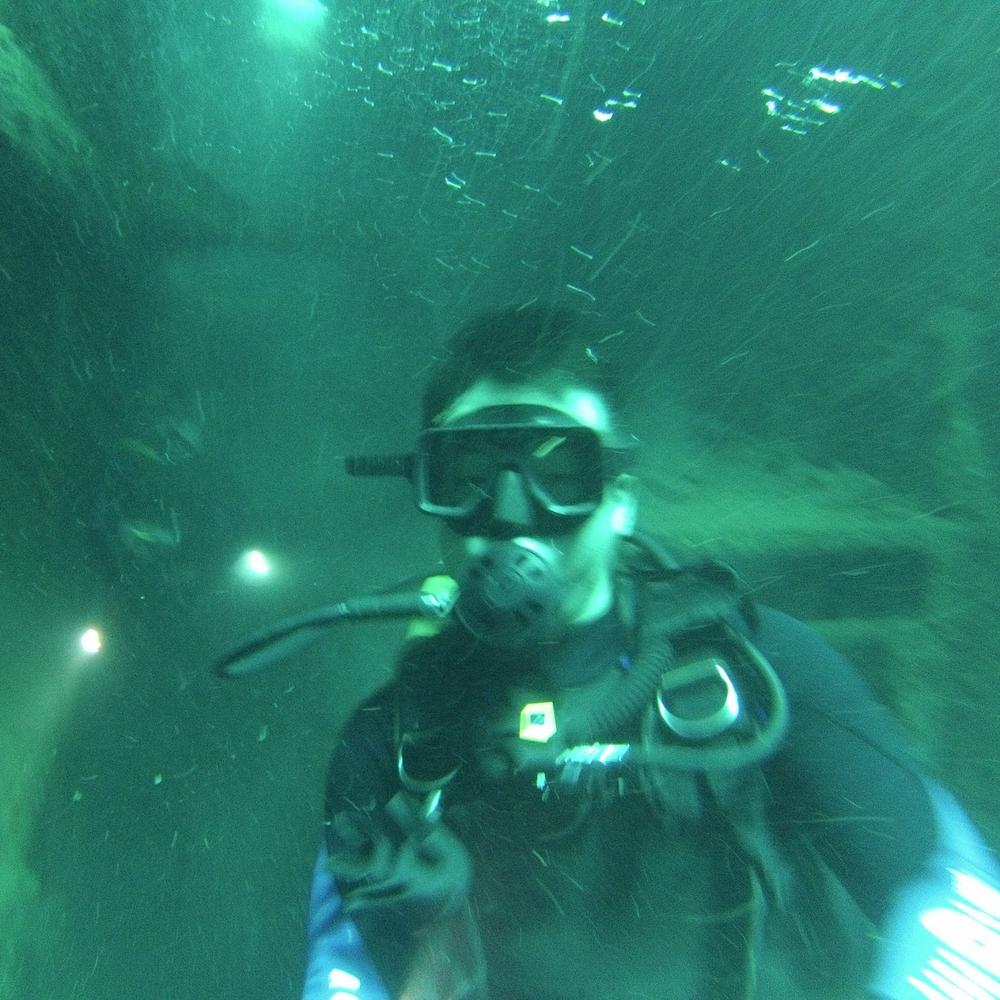 Diving in Akitsushima (Palawan, Philippines)