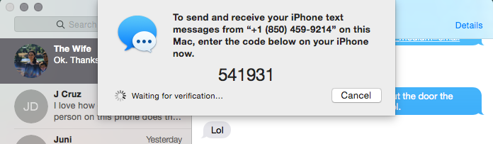 On a Mac, your code request will come in the Messages App and will look like this.