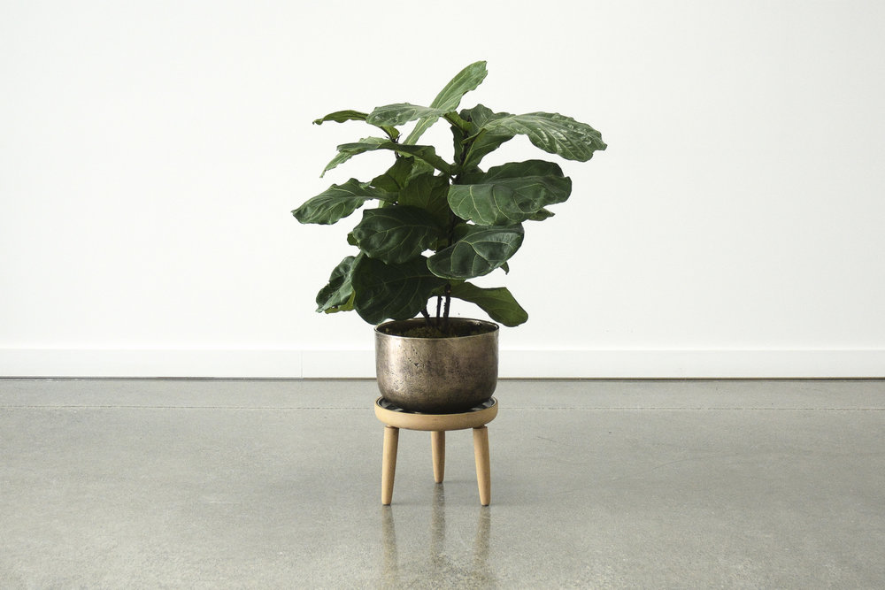 baré-planter_website.jpg