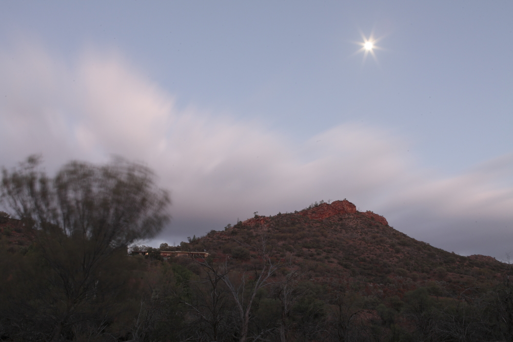 Arkaroola, early morning
