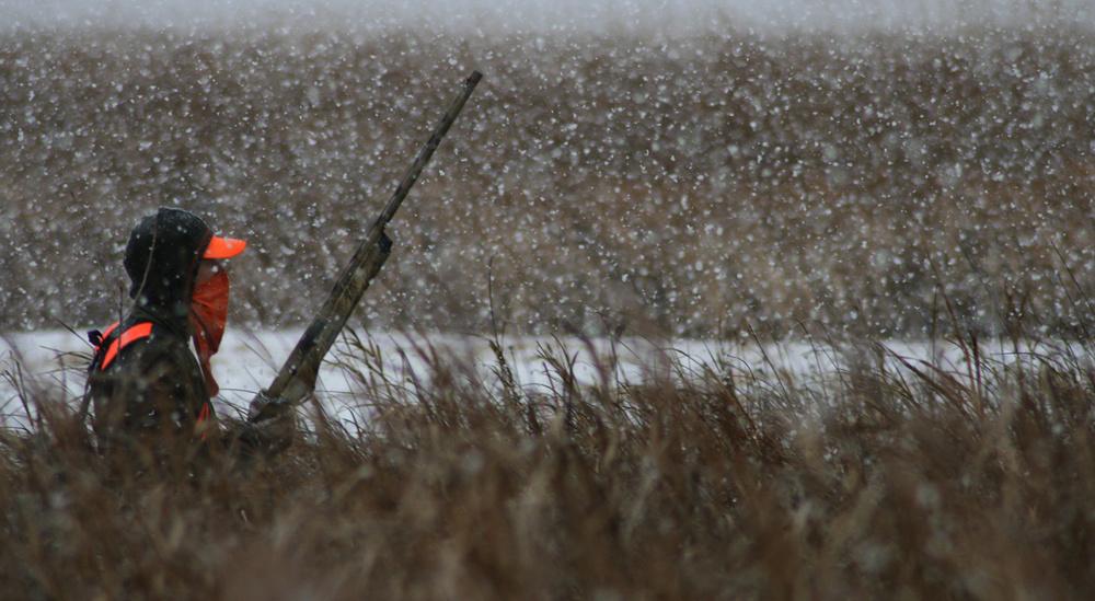 Pheasant Hunt in South Dakota