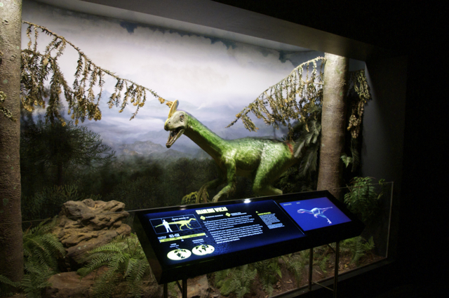 Guanlong wucaii - one of the oldest dinosaurs in the tyrannosaur family. Photo by m4bubs