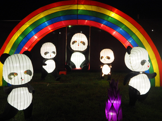 dandenongfestivaloflights.jpg