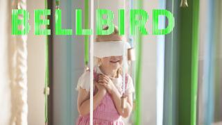 bellbird.jpg