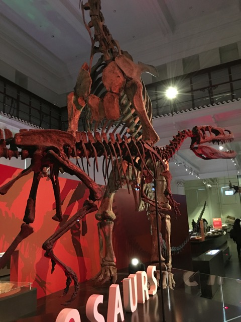australianmuseum06.jpg