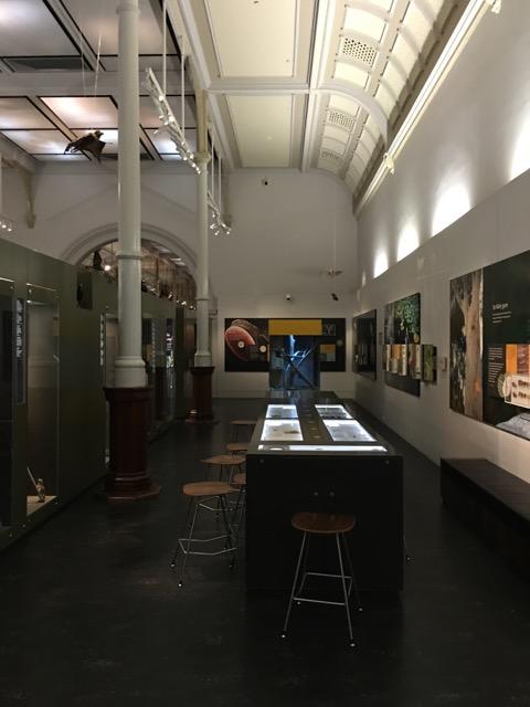 australianmuseum16.jpg