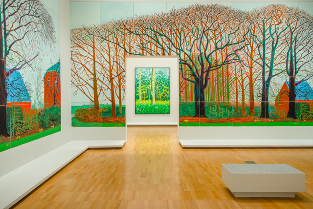 David Hockney - Current