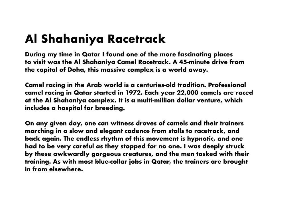 Al Shahaniya.jpg