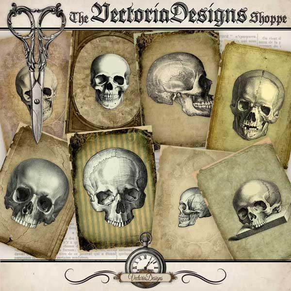 Skull ATC cards - 8 cards