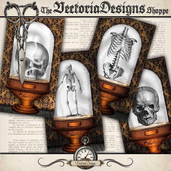 Halloween Specimen Jars Cards