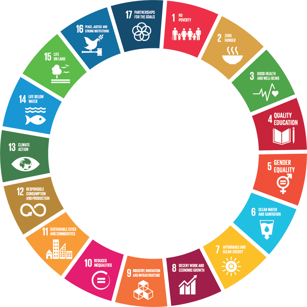 Time For A New Normal In Global Capital Markets Advancing Investment In The Sustainable Development Goals Sdgs on United Nations Goals