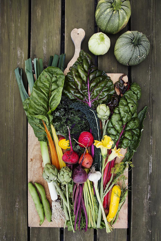 Hovelsrud´s grønnsakshage