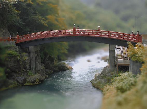 Nikko, 2005
