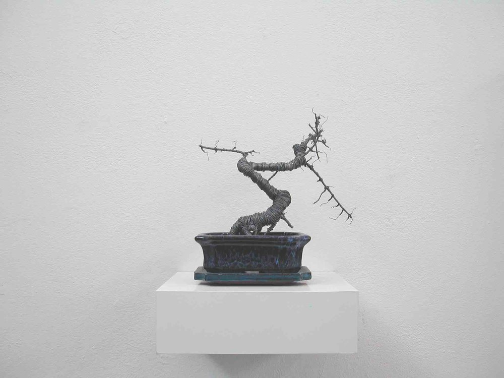 Andreas Kaiser, Draht, Bonsai,2009, mixed media, 30x25x25cm, courtesy Galerie Seippel Köln.jpg