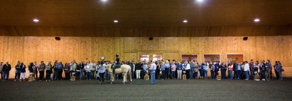 Mane Stream would like to thank  Red Tail Farm  for hosting the event at their wonderful facility. Their spacious indoor arena allowed the perfect opportunity to show a short demo explaining the significance of equine assisted therapy and the how it can impact the daily lives of those with special needs.