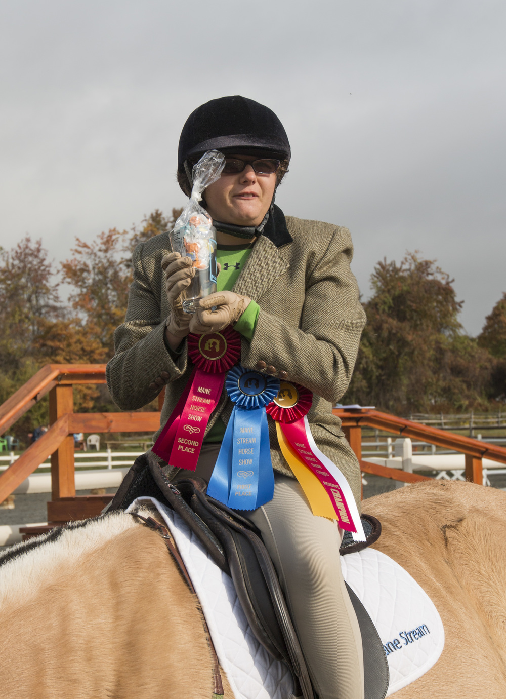Check out the 2015 Horse Show Gallery