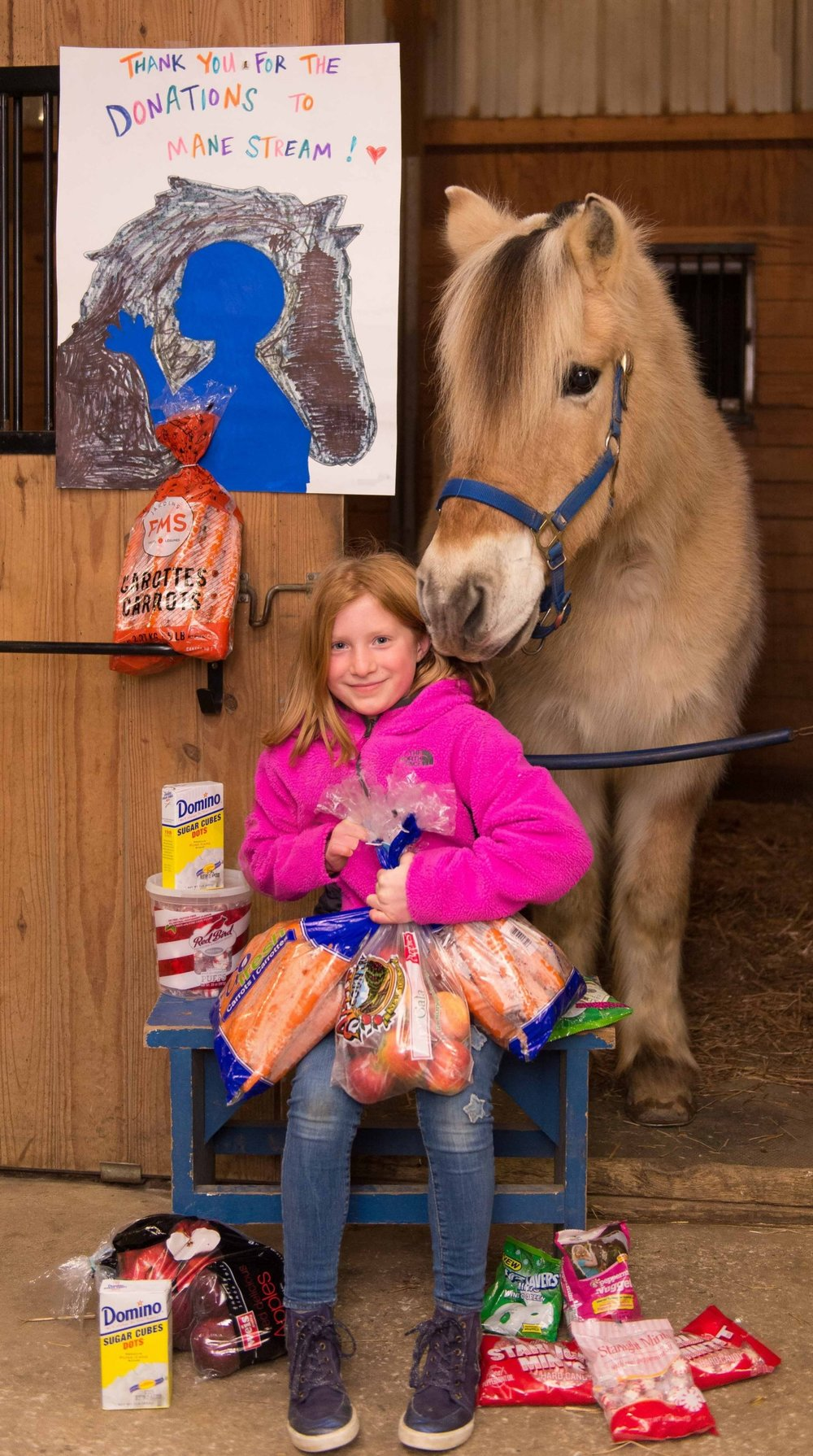Ian, Abigail's favorite MS horse, can't wait to tuck into this sweet buffet!