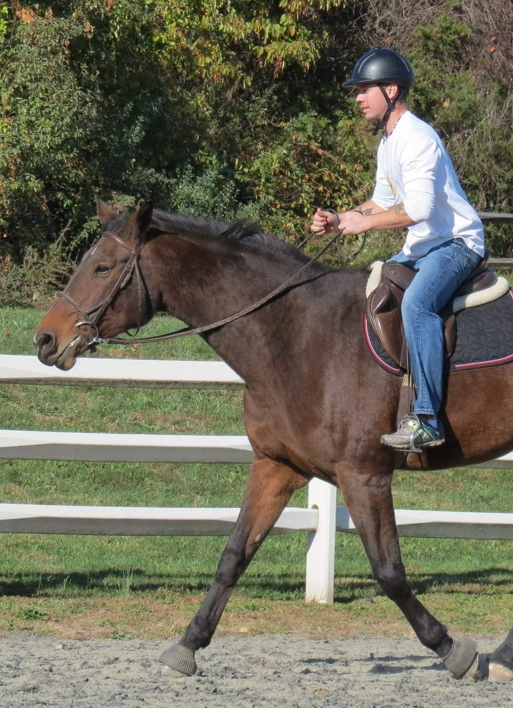 ADAPTIVE RIDING   PATH Certified Instructors will guide you through the basics of horsemanship- from grooming and tacking to horse care and horseback riding. Each riding lesson is adapted to the participants specific needs and abilities.
