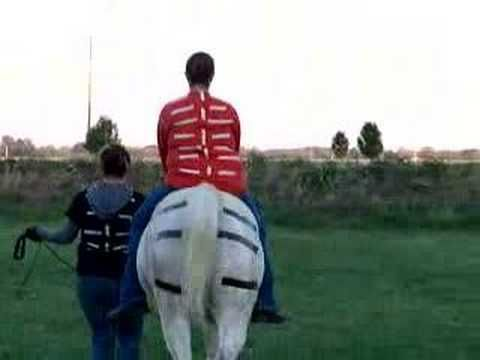 equine movement-2.jpg